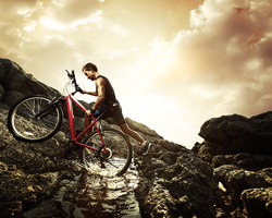 Cycles Fischer - Hochfelden - Le magasin